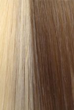 Citihair Extensions Colour #1422 Natural Ash with Light Golden Ash Blonde