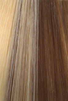Citihair Extensions Colour #1427 Natural Ash with Honey Blonde