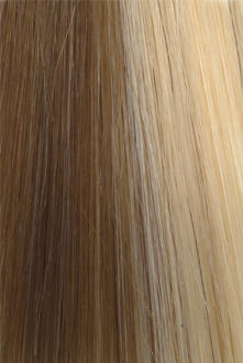 Citihair Extensions Colour #1827 Dirty Blonde with Honey Blonde