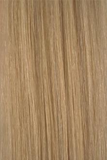 Colour #2227 Light Golden Ash Blonde with Honey Blonde