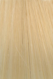Citihair Extensions Colour #22 Light Golden Ash Blonde
