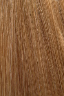 Citihair Extensions Colour #2730 Honey Blonde with Light Auburn